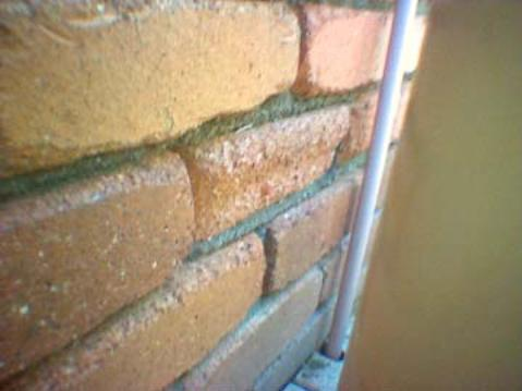 Building andPest Inspections Gladstone